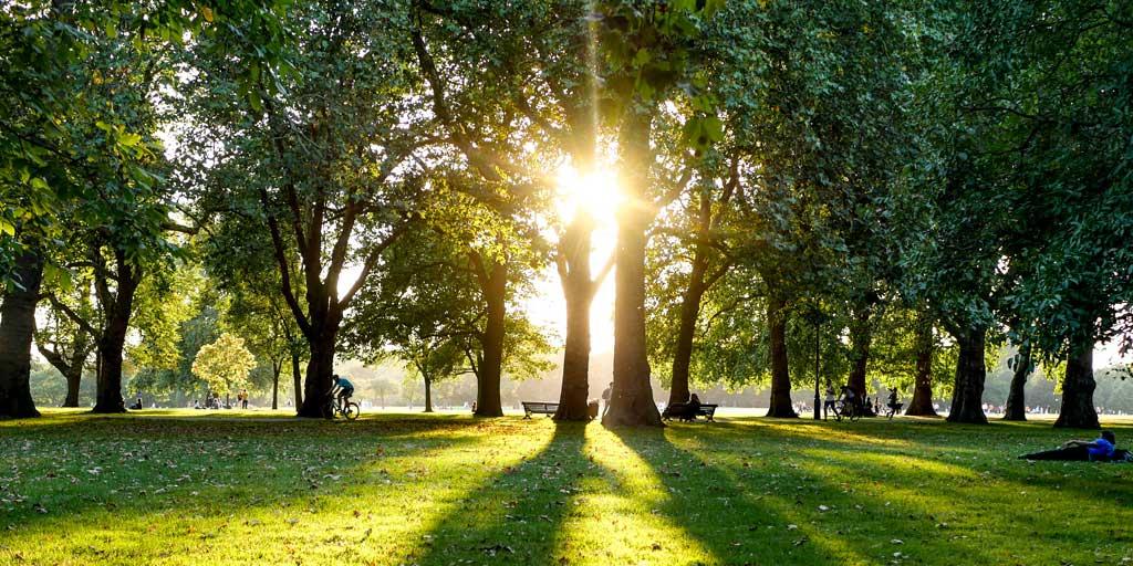 Islington Parks